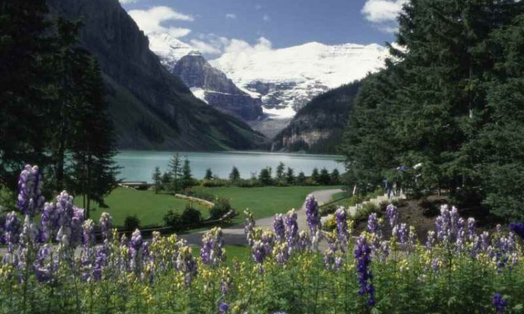 Cheap Flights from Prince George to Edmonton