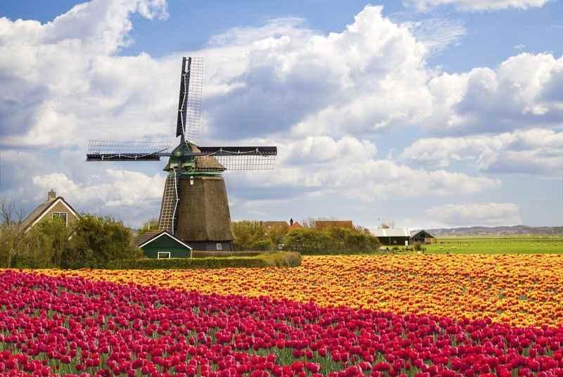 Cheap Flights from Kelowna to Amsterdam