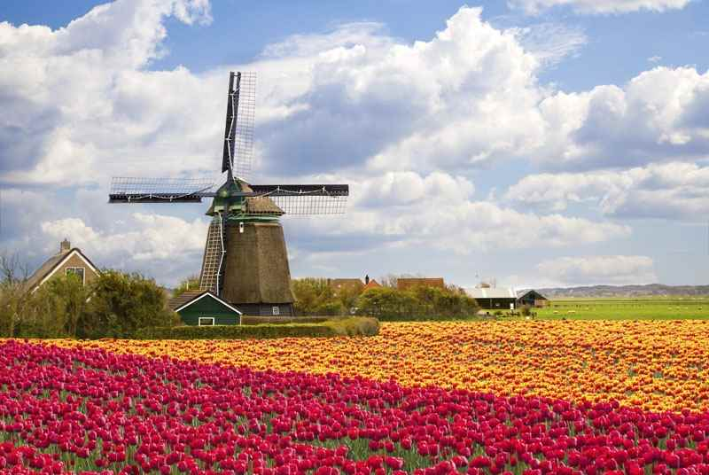 Cheap Flights from Victoria BC to Amsterdam